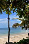 Seychelles 029